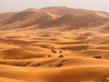 Gdzie bije serce pustyni? Symbolika i historia.