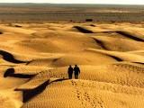 """Ostatnie dni wystawy """"Gdzie bije serce pustyni? Symbolika i historia"""""""