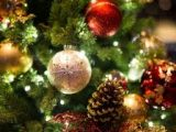 Zwiedzanie  w okresie świątecznym